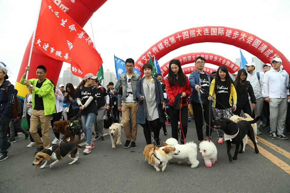 Yulin_Protest