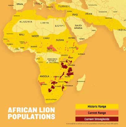 African Lion Populations_Range